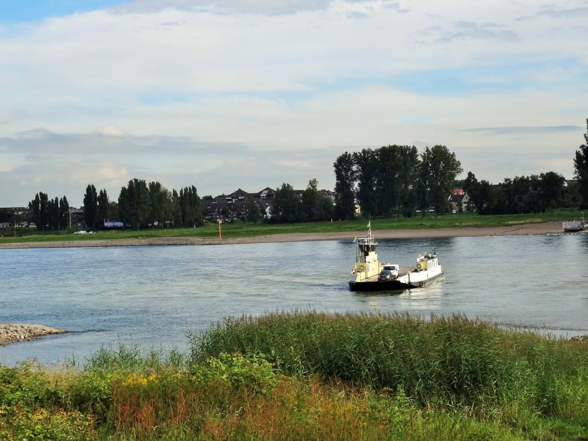 Wanderung zwischen den Rheinfähren Langel und Zons