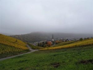 Kröv im Nebel.