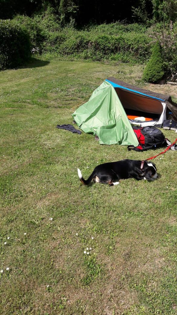 Jule wandert - Trekking mit Zelt