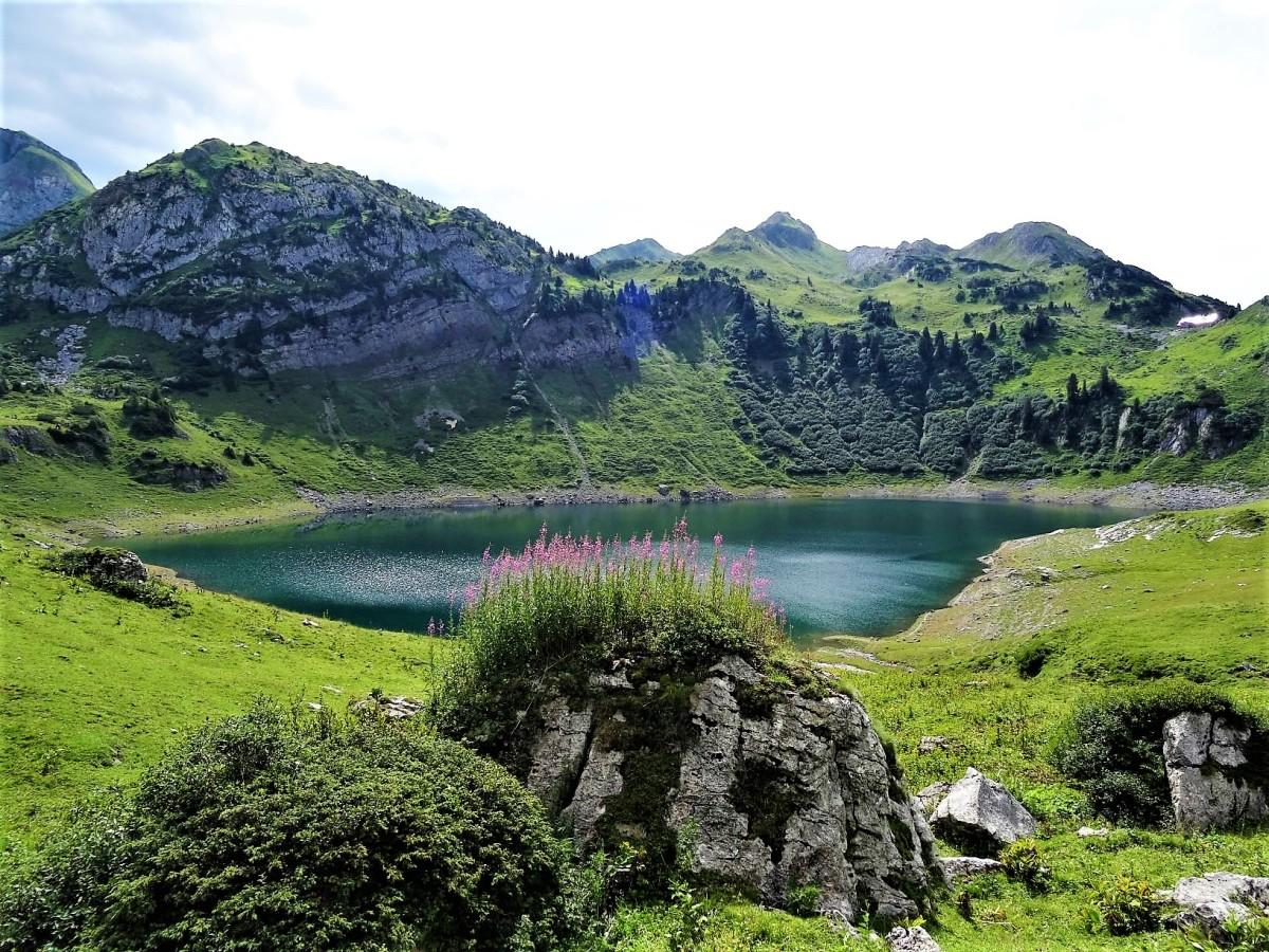 Lechweg mit Hund - Etappe 1: Formarinsee - Lech