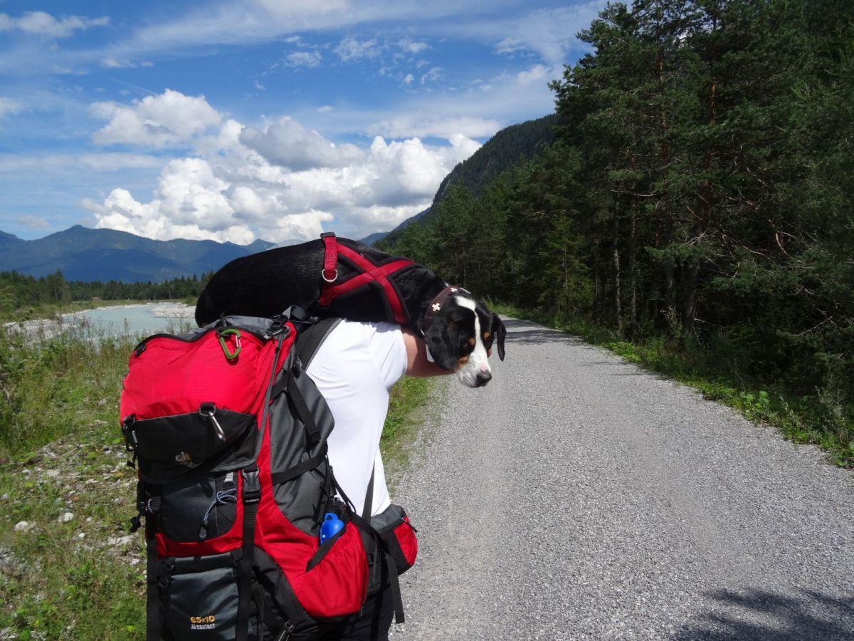 Lechweg mit Hund - Etappe 7 : Stanzach - Reutte