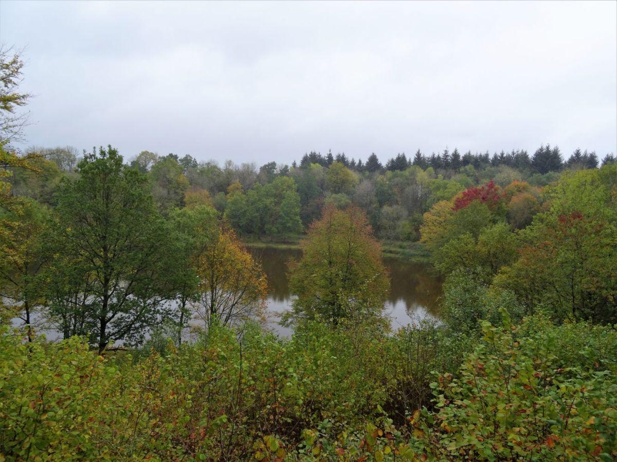 Wanderung Manderscheid - Wolfsschlucht- Windsborner Kratersee