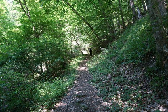 Wanderweg zur Ehrenburg