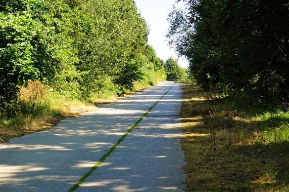 Panzerstraße Dreiborner Hochfläche.