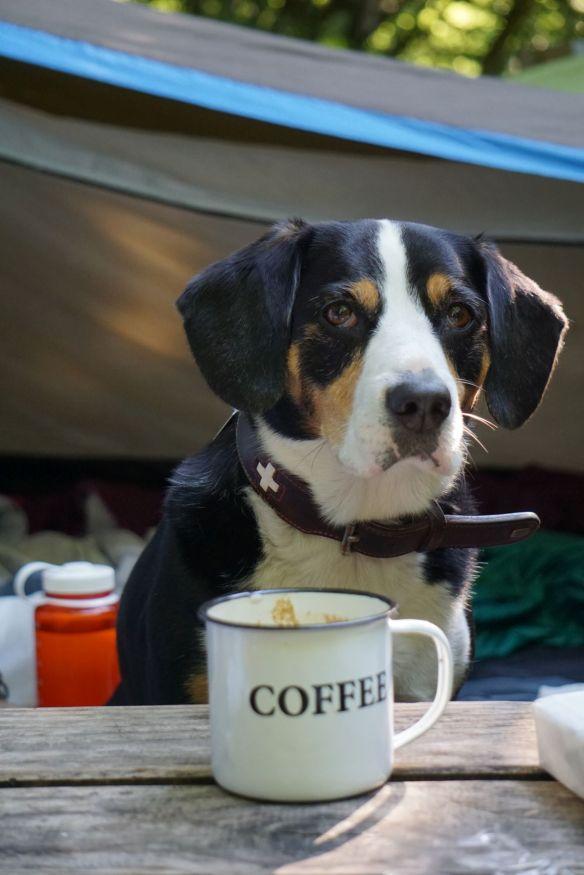 Jule mit kalten Kaffee