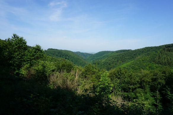 Fernblick über das Brodenbachtal