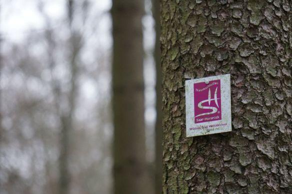Traumschleife Wildnis Trail