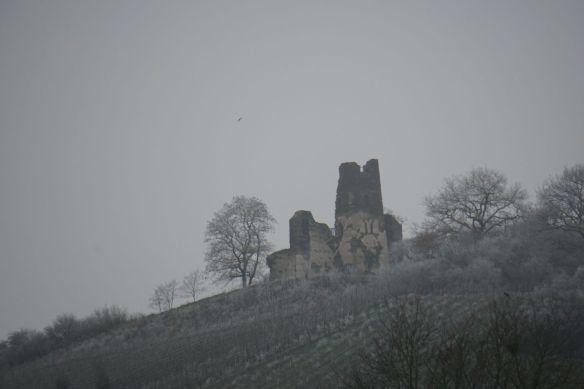 Kloster Ruine