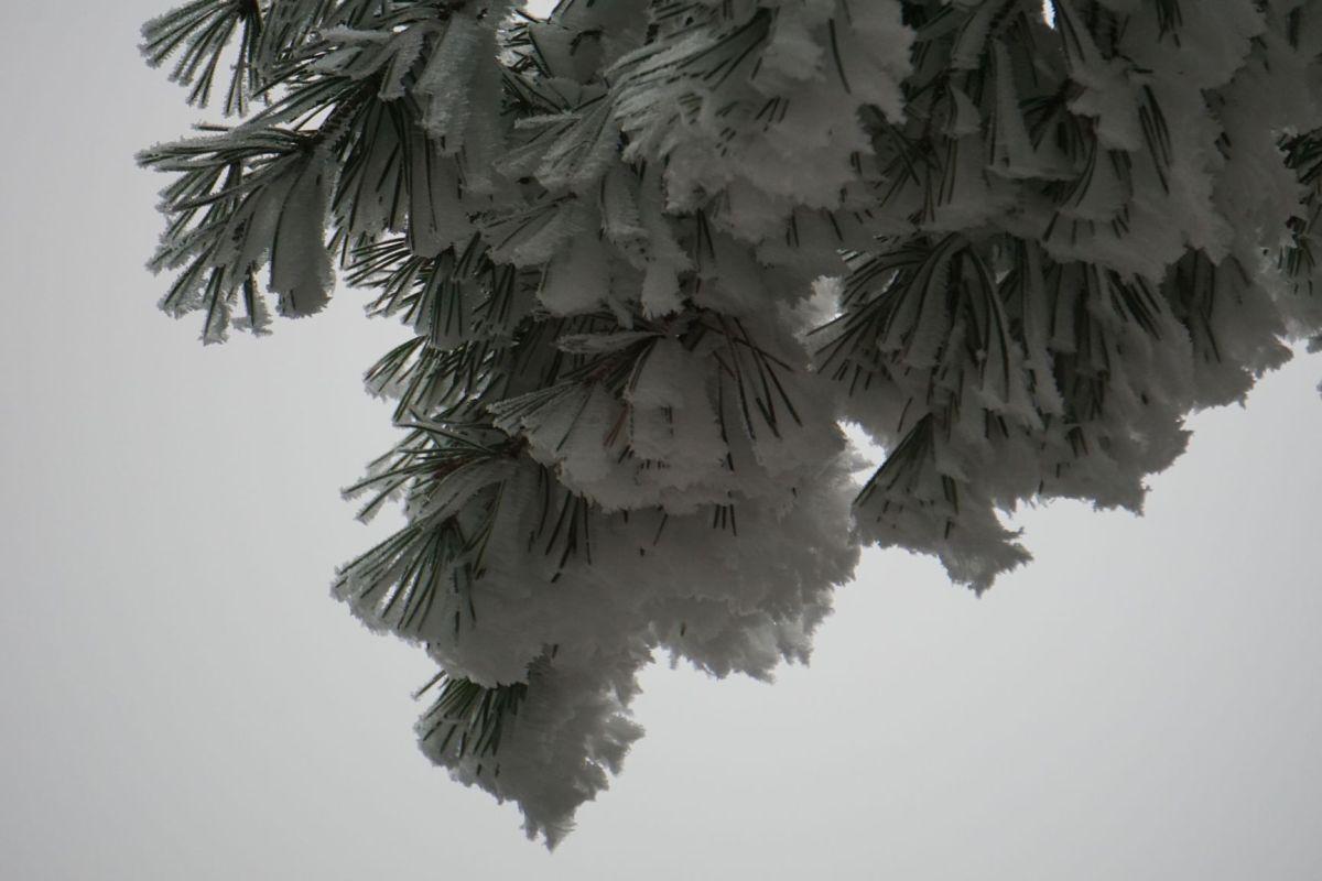 Wanderung Traben-Trarbach Mont Royal